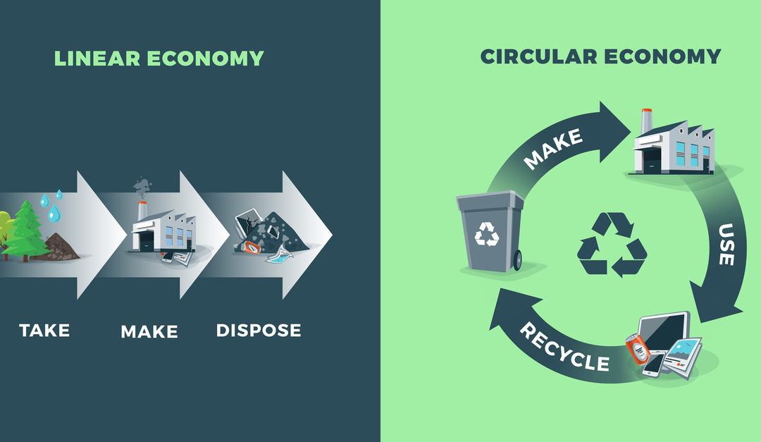Transitioning from Linear to Circular Economies
